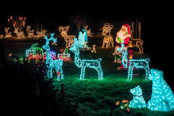 La Magia delle Luci di Natale di Dyker Heights