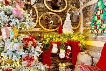 Il Regno di Babbo Natale Vetralla – Come Nasce